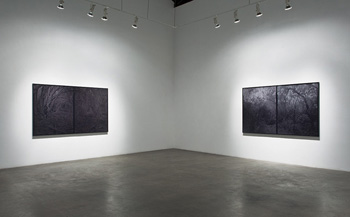 BRIAN FORREST - Installation View, December, 2010, photograph, black and white, trees